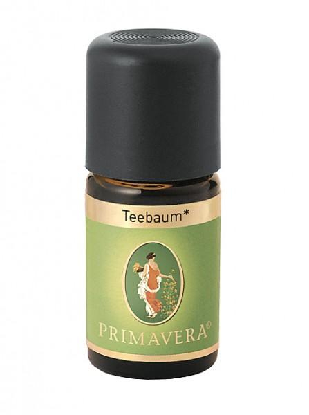 Primavera Teebaum bio