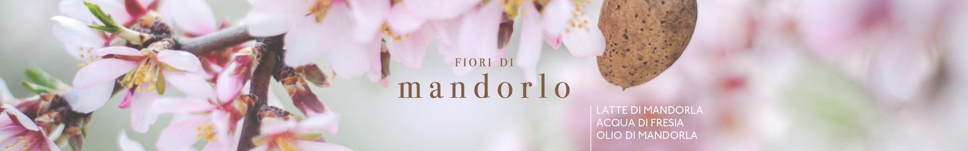 Fiori-di-Mandorlo-cover